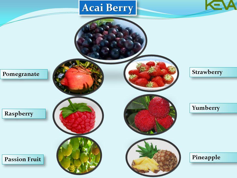 Acai Berry Pomegranate Raspberry Passion Fruit Strawberry Yumberry Pineapple