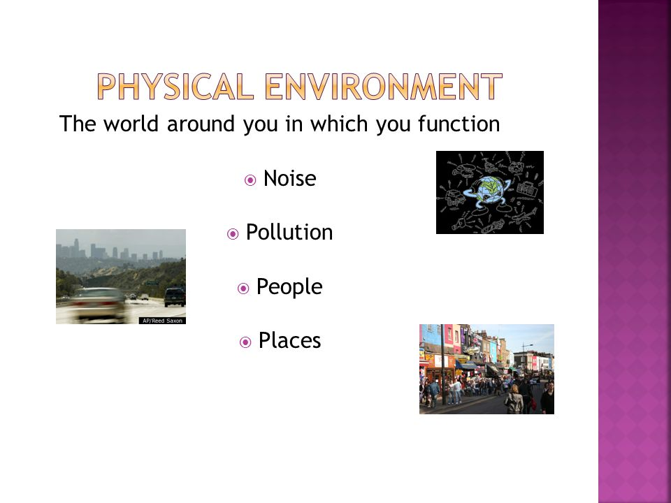 The world around you in which you function  Noise  Pollution  People  Places