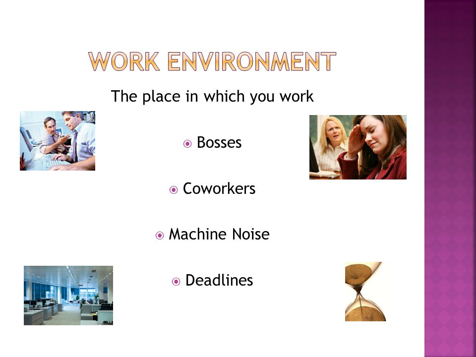 The place in which you work  Bosses  Coworkers  Machine Noise  Deadlines