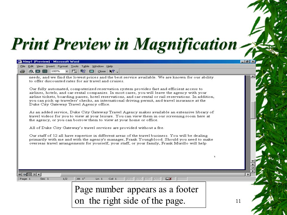 11 Print Preview in Magnification Page number appears as a footer on the right side of the page.