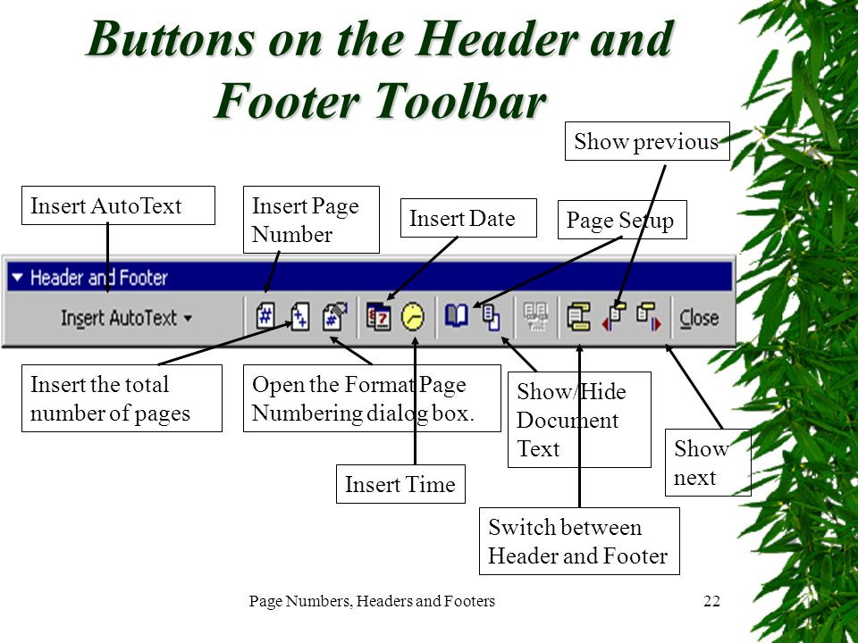 Page Numbers, Headers and Footers22 Buttons on the Header and Footer Toolbar Insert AutoTextInsert Page Number Insert the total number of pages Open t