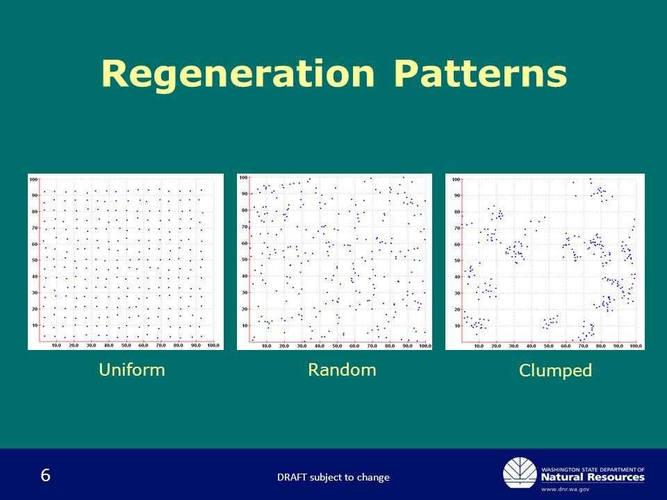6 Regeneration Patterns DRAFT subject to change RandomUniform Clumped