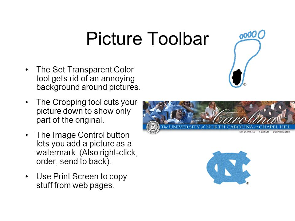 Picture Toolbar The Set Transparent Color tool gets rid of an annoying background around pictures. The Cropping tool cuts your picture down to show on