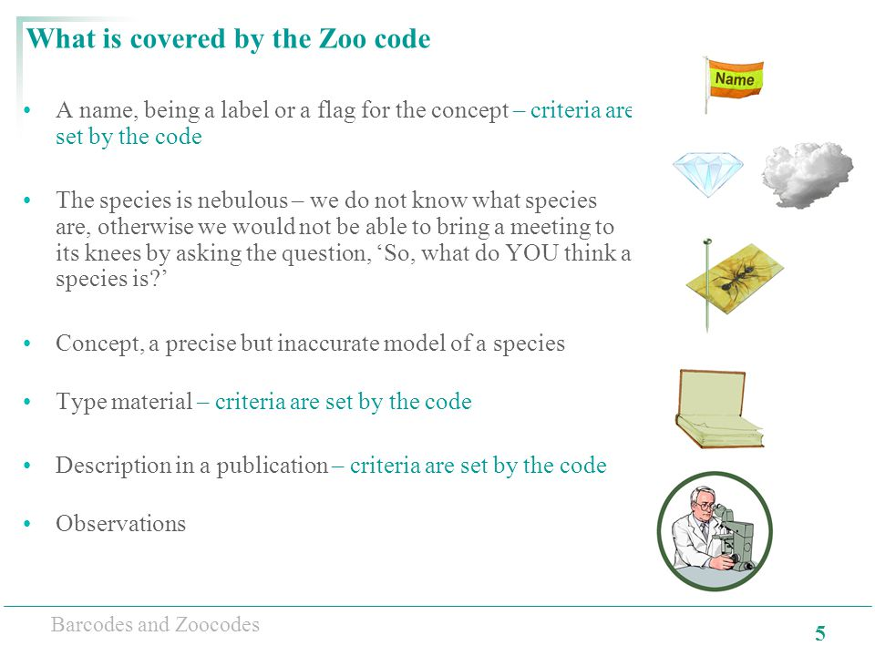 5 Barcodes and Zoocodes What is covered by the Zoo code A name, being a label or a flag for the concept – criteria are set by the code The species is nebulous – we do not know what species are, otherwise we would not be able to bring a meeting to its knees by asking the question, 'So, what do YOU think a species is?' Concept, a precise but inaccurate model of a species Type material – criteria are set by the code Description in a publication – criteria are set by the code Observations