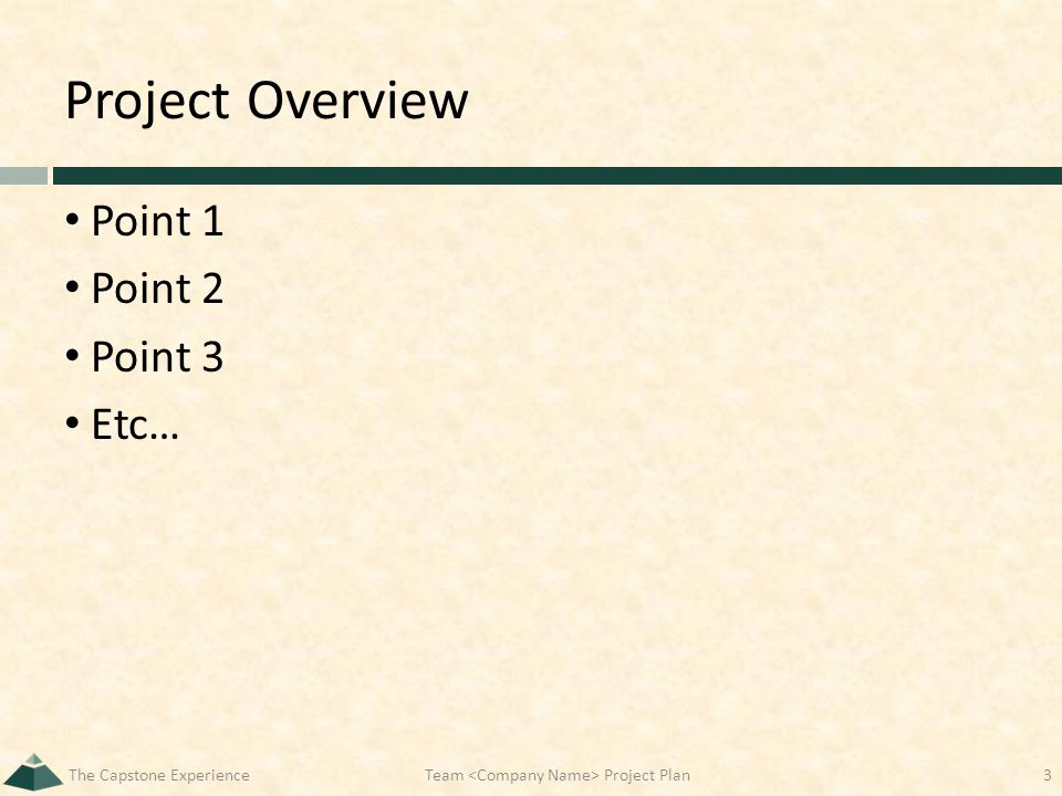 Project Overview Point 1 Point 2 Point 3 Etc… The Capstone ExperienceTeam Project Plan3