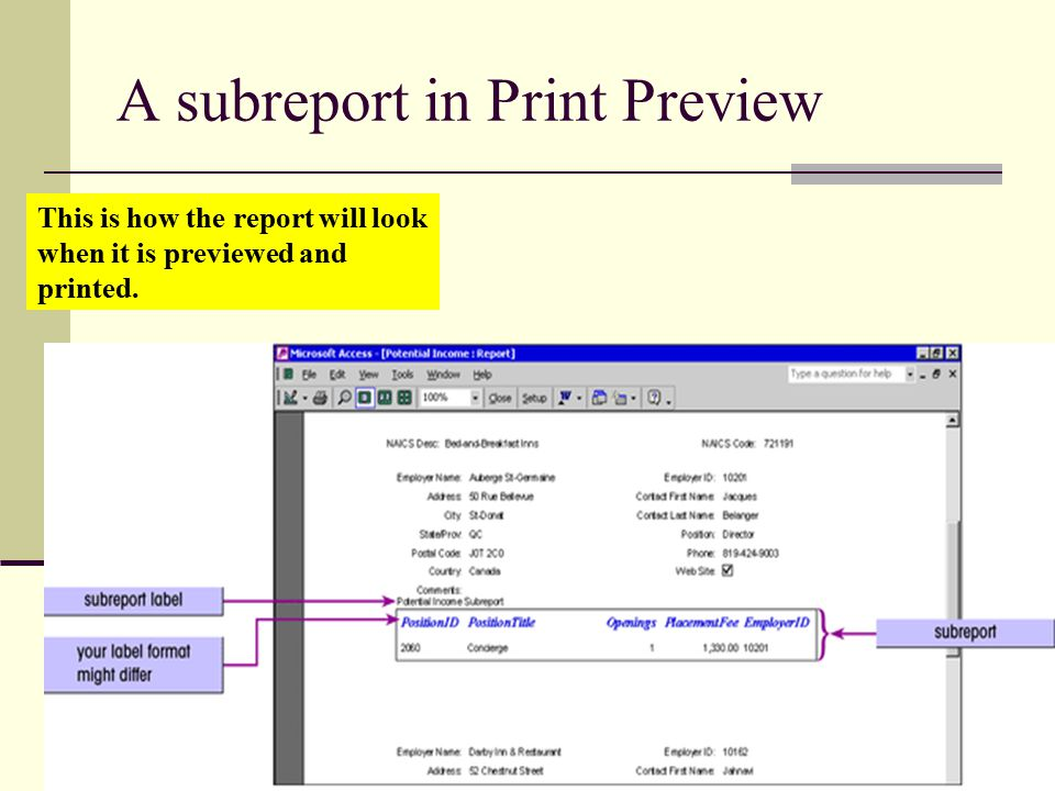 10 A subreport in Print Preview This is how the report will look when it is previewed and printed.