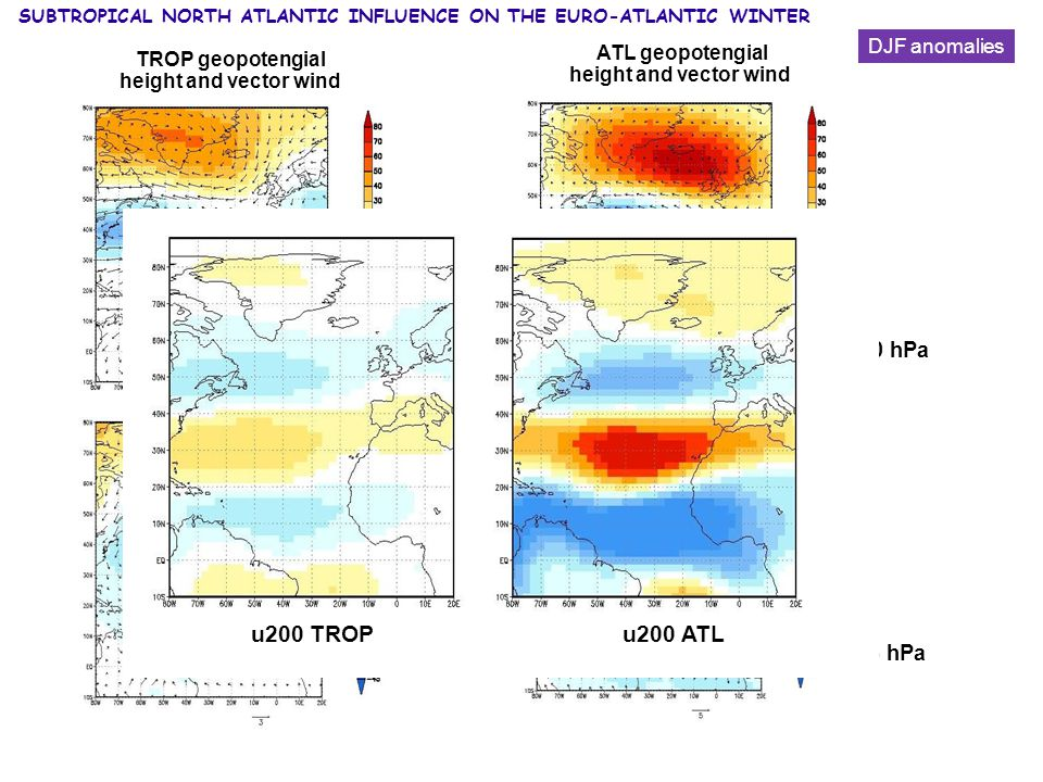 ATL geopotengial height and vector wind 200 hPa 925 hPa TROP geopotengial height and vector wind 200 hPa 925 hPa DJF anomalies u200 TROP u200 ATL SUBTROPICAL NORTH ATLANTIC INFLUENCE ON THE EURO-ATLANTIC WINTER