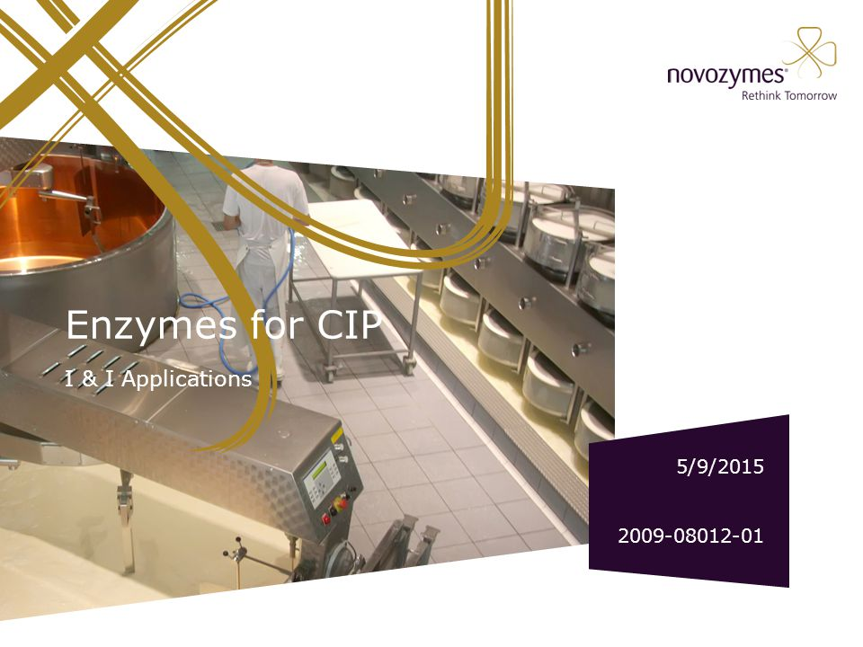 EDITING SLIDES IN THE NOVOZYMES TEMPLATE Choose Layout: Click Layout in the top menu Home.
