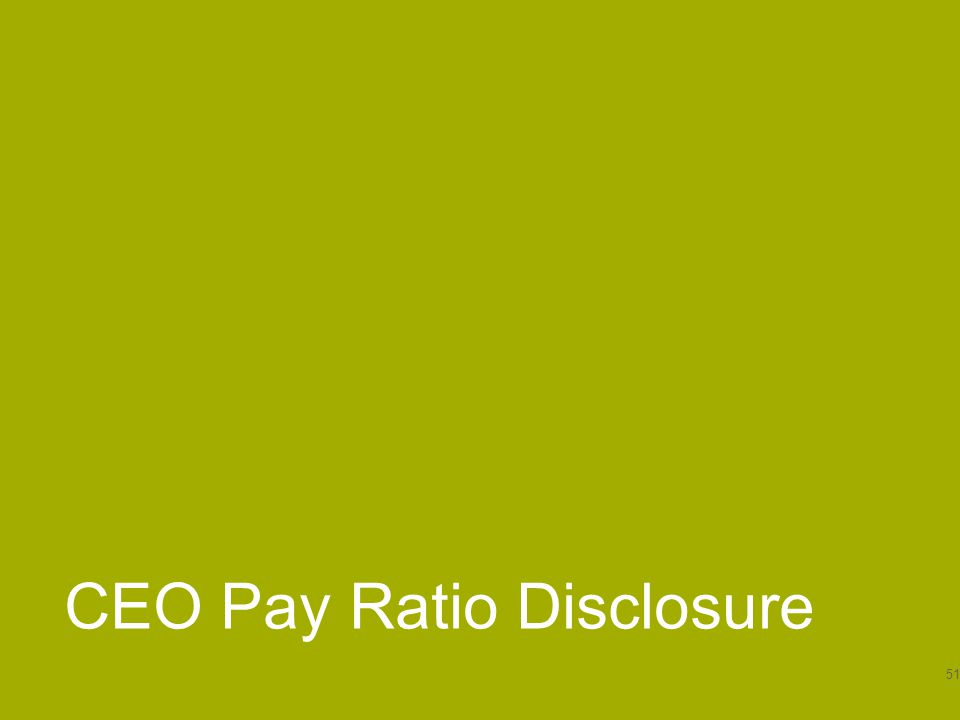 CEO Pay Ratio Disclosure 51