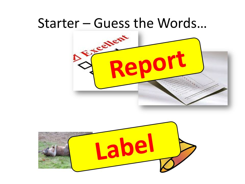 Starter – Guess the Words… Reports R e p o r t Label