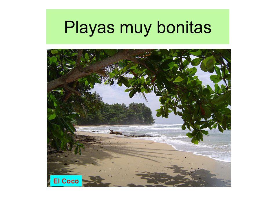 Playas muy bonitas El Coco