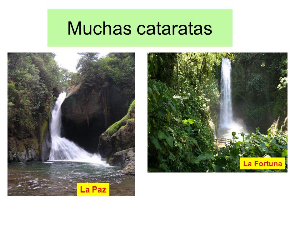 Muchas cataratas La Paz La Fortuna