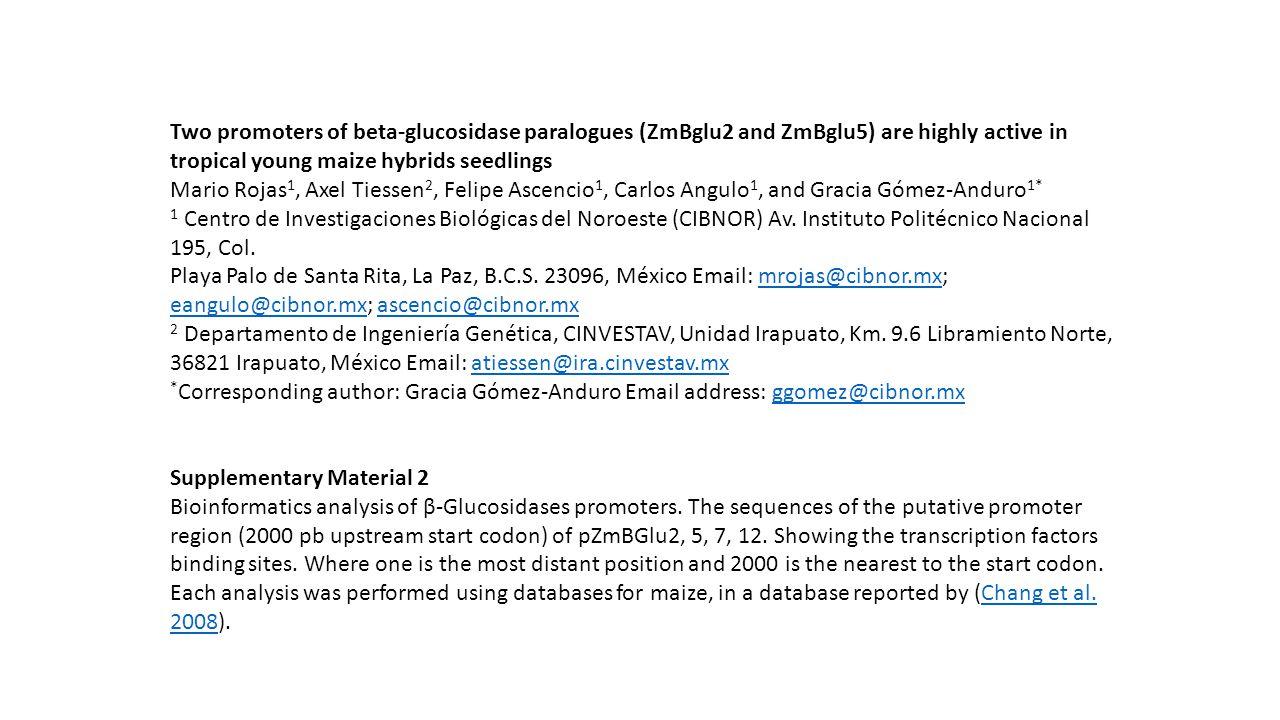 Two promoters of beta-glucosidase paralogues (ZmBglu2 and ZmBglu5) are highly active in tropical young maize hybrids seedlings Mario Rojas 1, Axel Tiessen 2, Felipe Ascencio 1, Carlos Angulo 1, and Gracia Gómez-Anduro 1* 1 Centro de Investigaciones Biológicas del Noroeste (CIBNOR) Av.