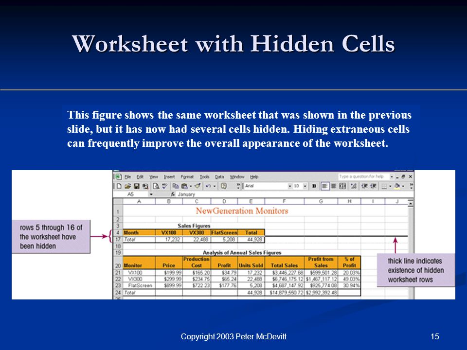 15Copyright 2003 Peter McDevitt Worksheet with Hidden Cells This figure shows the same worksheet that was shown in the previous slide, but it has now had several cells hidden.