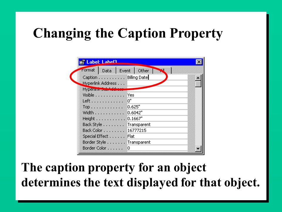 Changing the Caption Property The caption property for an object determines the text displayed for that object.