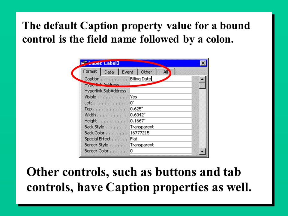 The default Caption property value for a bound control is the field name followed by a colon. Other controls, such as buttons and tab controls, have C