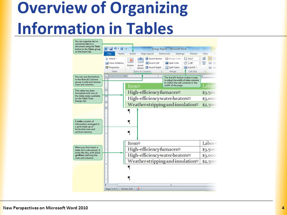 XP Overview of Organizing Information in Tables New Perspectives on Microsoft Word 20105