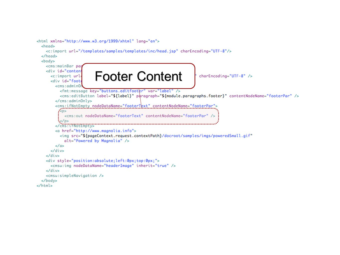 Footer Content