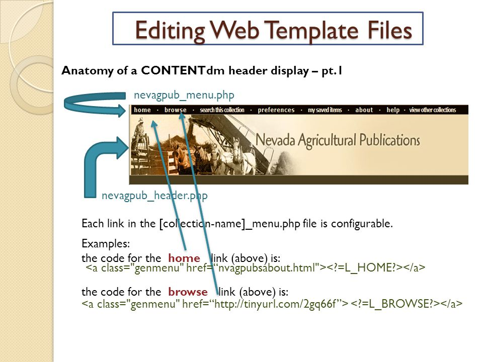 Editing Web Template Files Anatomy of a CONTENTdm header display – pt.1 nevagpub_menu.php nevagpub_header.php Each link in the [collection-name]_menu.php file is configurable.