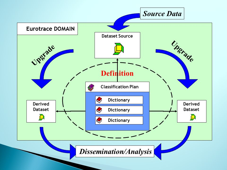 Definition Eurotrace DOMAIN Derived Dataset Derived Dataset Dataset Source Dictionary Classification Plan Source Data Upgrade Dissemination/Analysis