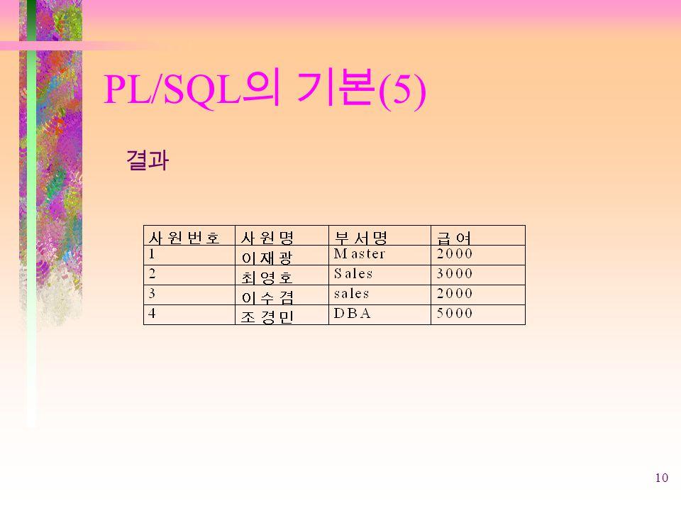 10 PL/SQL 의 기본 (5) 결과