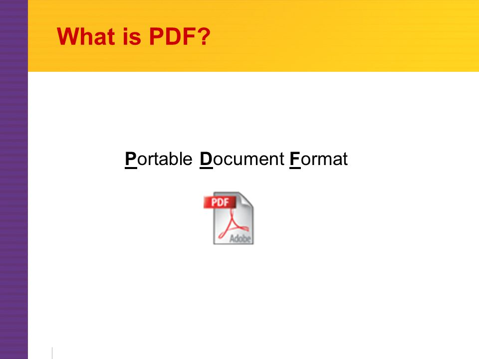 What is PDF Portable Document Format