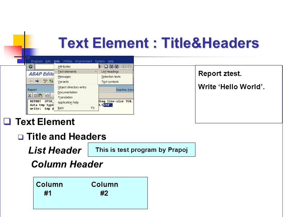 Text Element : Title&Headers  Text Element  Title and Headers List Header Column Header This is test program by Prapoj Column #1 #2 Report ztest. Wr