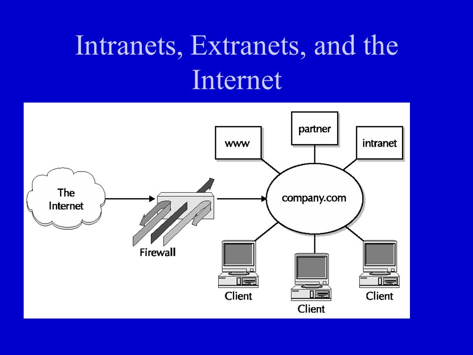 Intranets, Extranets, and the Internet
