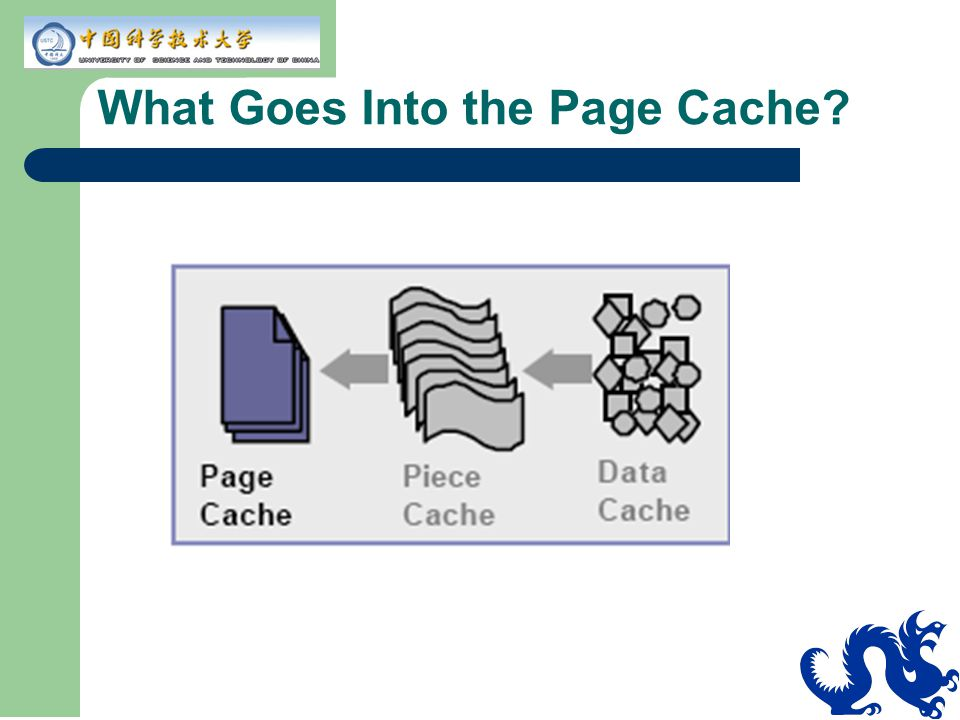 What Goes Into the Page Cache?
