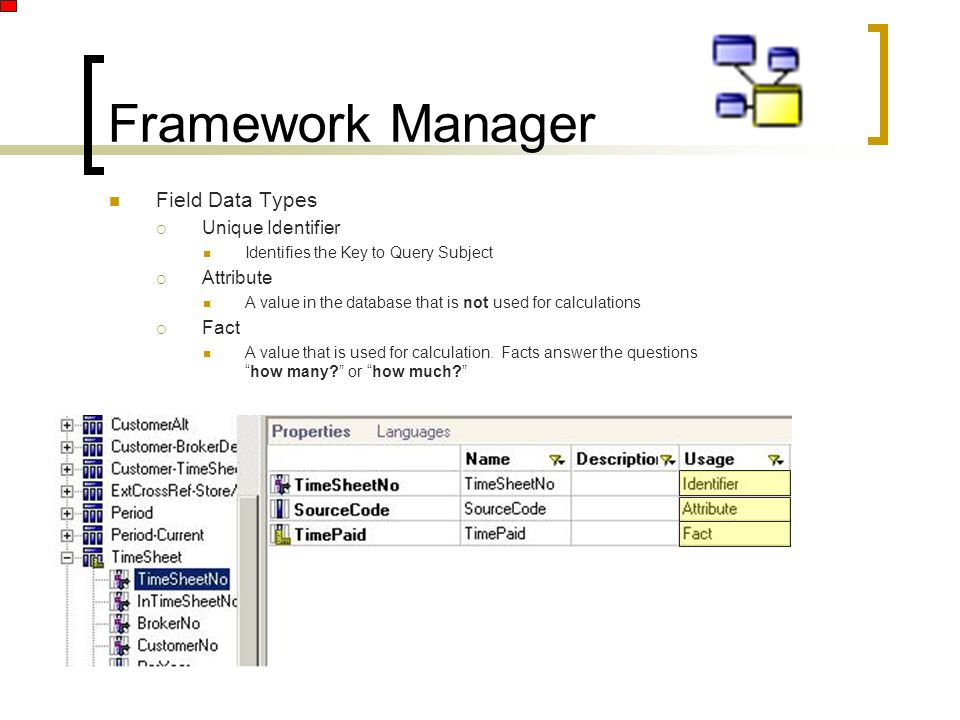 Framework Manager Field Data Types  Unique Identifier Identifies the Key to Query Subject  Attribute A value in the database that is not used for calculations  Fact A value that is used for calculation.