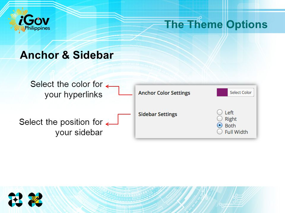 The Theme Options Select the color for your hyperlinks Anchor & Sidebar Select the position for your sidebar