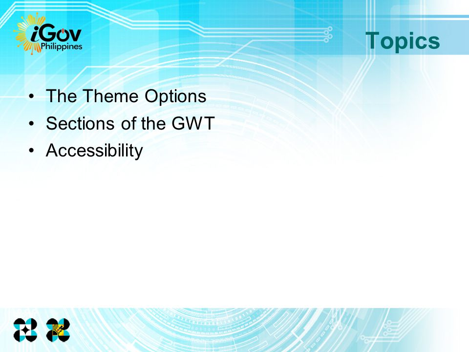 The Theme Options Sections of the GWT Accessibility Topics
