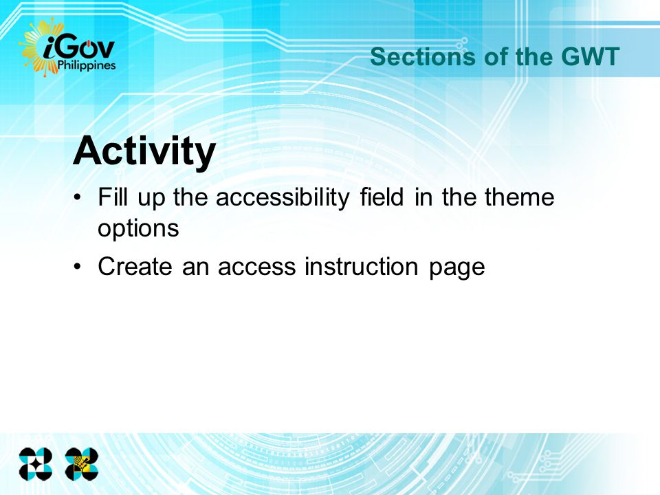 Sections of the GWT Activity Fill up the accessibility field in the theme options Create an access instruction page
