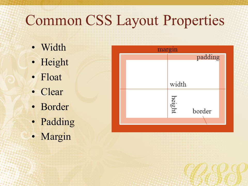 Common CSS Layout Properties Width Height Float Clear Border Padding Margin width height padding margin border