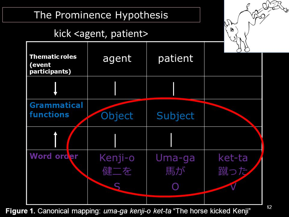 kick Thematic roles (event participants) agentpatient Grammatical functions ObjectSubject Word order Kenji-o 健二を S Uma-ga 馬が O ket-ta 蹴った V 42 The Pro