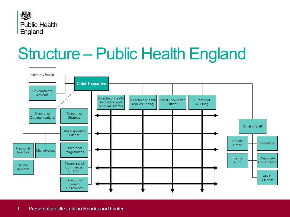 Structure – Public Health England 1Presentation title - edit in Header and Footer Chief Executive Director of Health Protection and Medical Director Director of Health and Wellbeing Chief Knowledge Officer Director of Nursing Chief of Staff Private Office Secretariat Internal Audit Corporate Governance Legal Service Director of Strategy Chief Operating Officer Director of Programmes Finance and Commercial Director Director of Human Resources Director of Communications Regional Directors Centre Directors Development Advisor Advisory Board Microbiology