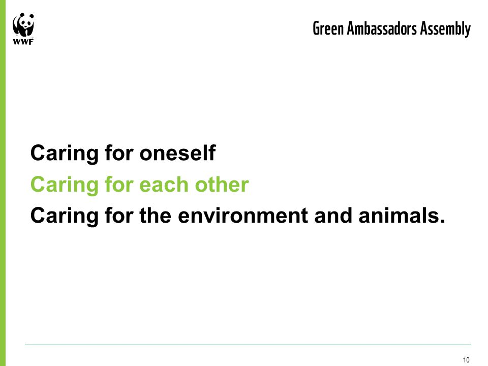 Caring for oneself Caring for each other Caring for the environment and animals. Green Ambassadors Assembly 10
