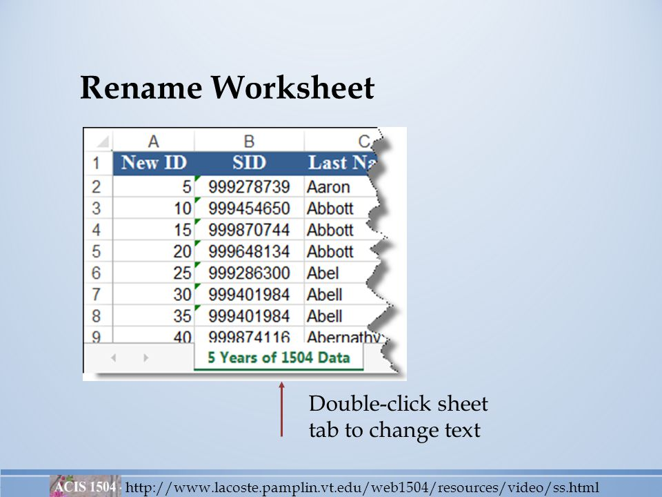 Rename Worksheet http://www.lacoste.pamplin.vt.edu/web1504/resources/video/ss.html Double-click sheet tab to change text