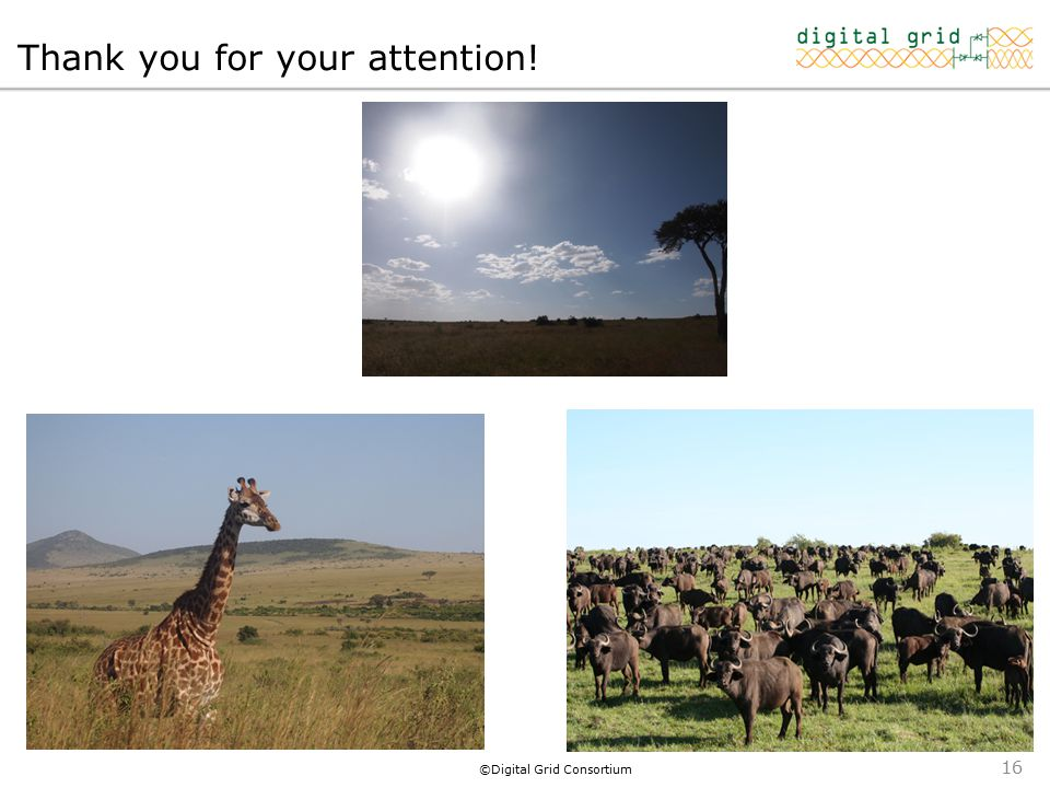 ©Digital Grid Consortium Thank you for your attention! 16