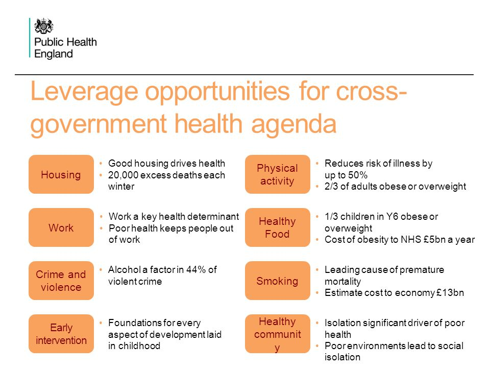 Leverage opportunities for cross- government health agenda Housing Work Crime and violence Early intervention Good housing drives health 20,000 excess
