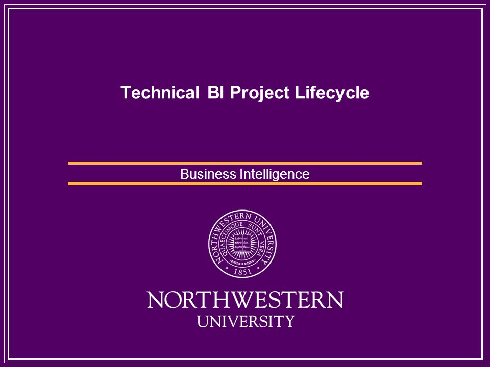 Technical BI Project Lifecycle Business Intelligence