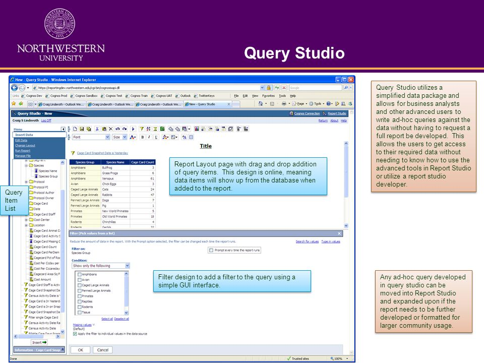Query Studio Query Item List Report Layout page with drag and drop addition of query items. This design is online, meaning data items will show up fro