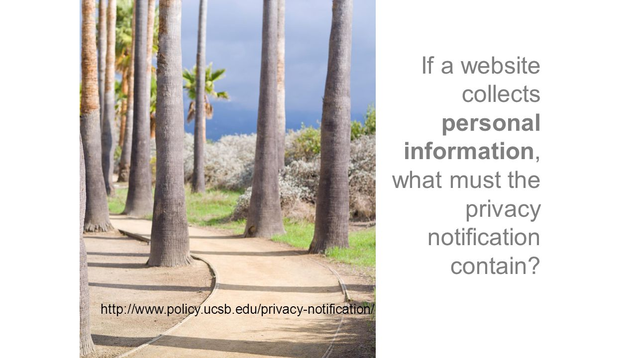 If a website collects personal information, what must the privacy notification contain.