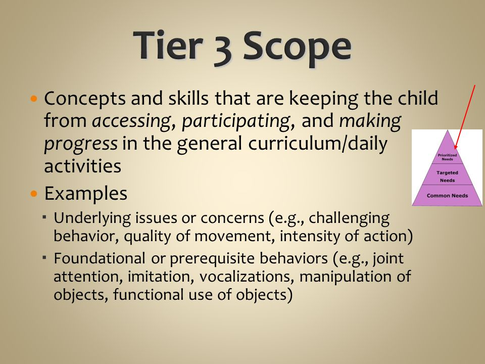 Concepts and skills that are keeping the child from accessing, participating, and making progress in the general curriculum/daily activities Examples  Underlying issues or concerns (e.g., challenging behavior, quality of movement, intensity of action)  Foundational or prerequisite behaviors (e.g., joint attention, imitation, vocalizations, manipulation of objects, functional use of objects)