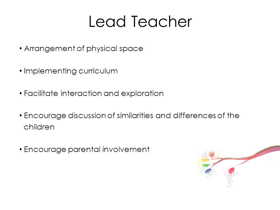 Lead Teacher Arrangement of physical space Implementing curriculum Facilitate interaction and exploration Encourage discussion of similarities and dif