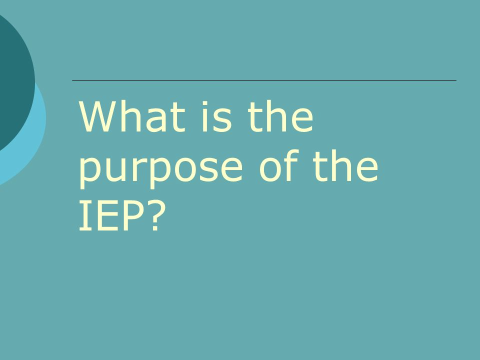 What is the purpose of the IEP?