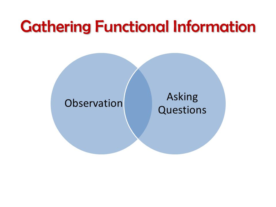 Gathering Functional Information Observation Asking Questions