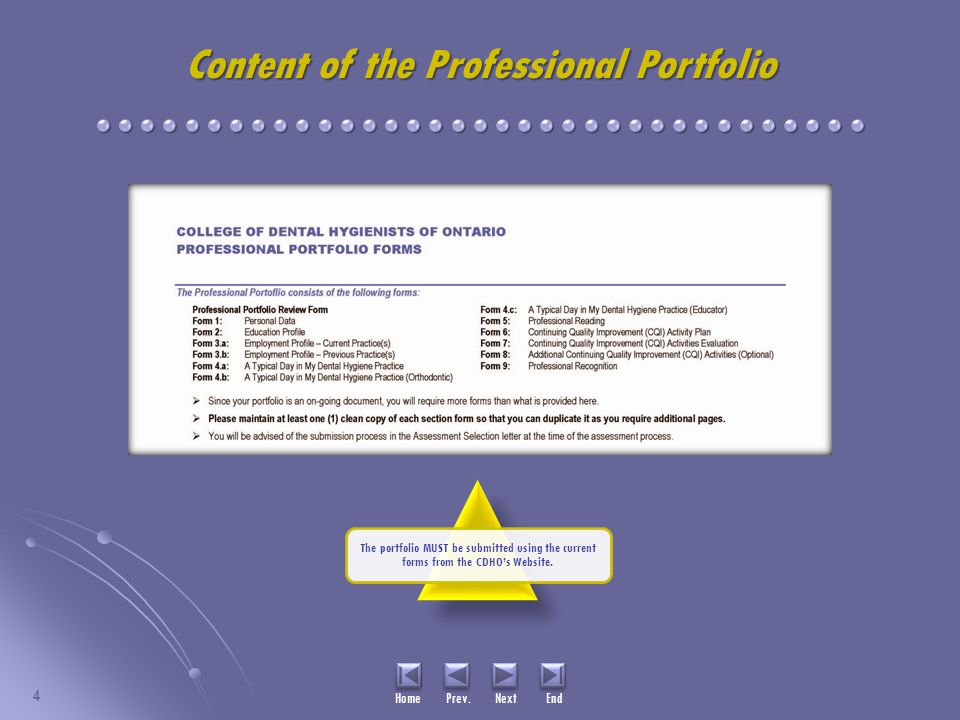 Content of the Professional Portfolio 4 Home Prev.