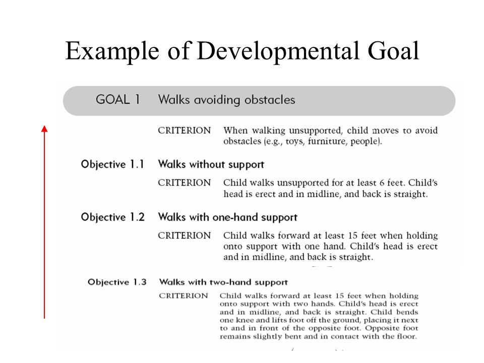 Example of Developmental Goal