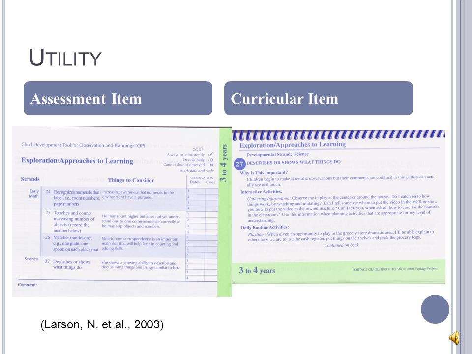 U TILITY Assessment ItemCurricular Item (Larson, N. et al., 2003)